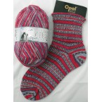 Opal Best Friends Sock Yarn