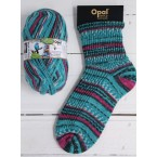 Opal Rainforest XIII Sock Yarn