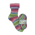Opal X-Large Snowdrop 8 ply Sock Yarn