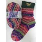 Opal Wonderland 6 ply Sock Yarn
