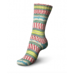 Regia Design Line by Arne & Carlos Special Edition Sock Yarn