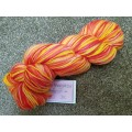 Woolly Wumpkins MCN Sock Yarn