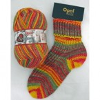 6ply Sock Yarns