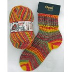 Opal Romance 6ply Sock Yarn