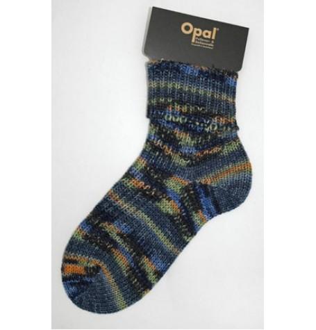 Opal Polar Lights 6 ply Sock Yarn