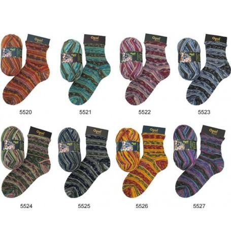 Sock Kits!